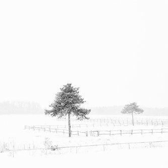 oxygennnn Winter in Sumadija