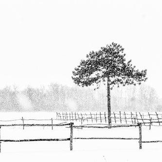 oxygennnn Winter in Sumadija part II