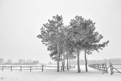 oxygennnn Winter in Sumadija part V