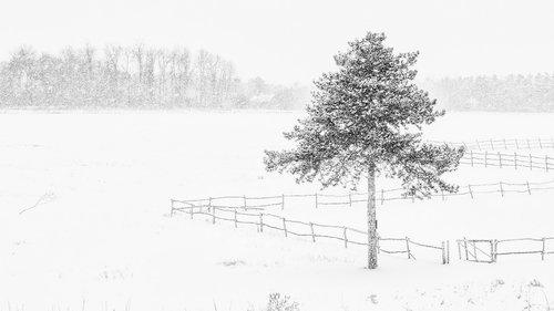 oxygennnn winter in Sumadija part 3