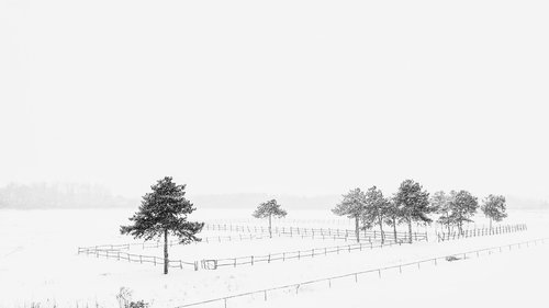 oxygennnn winter in sumadija part IV
