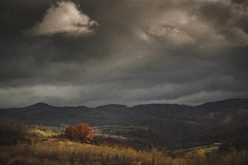 oxygennnn Autumn 4