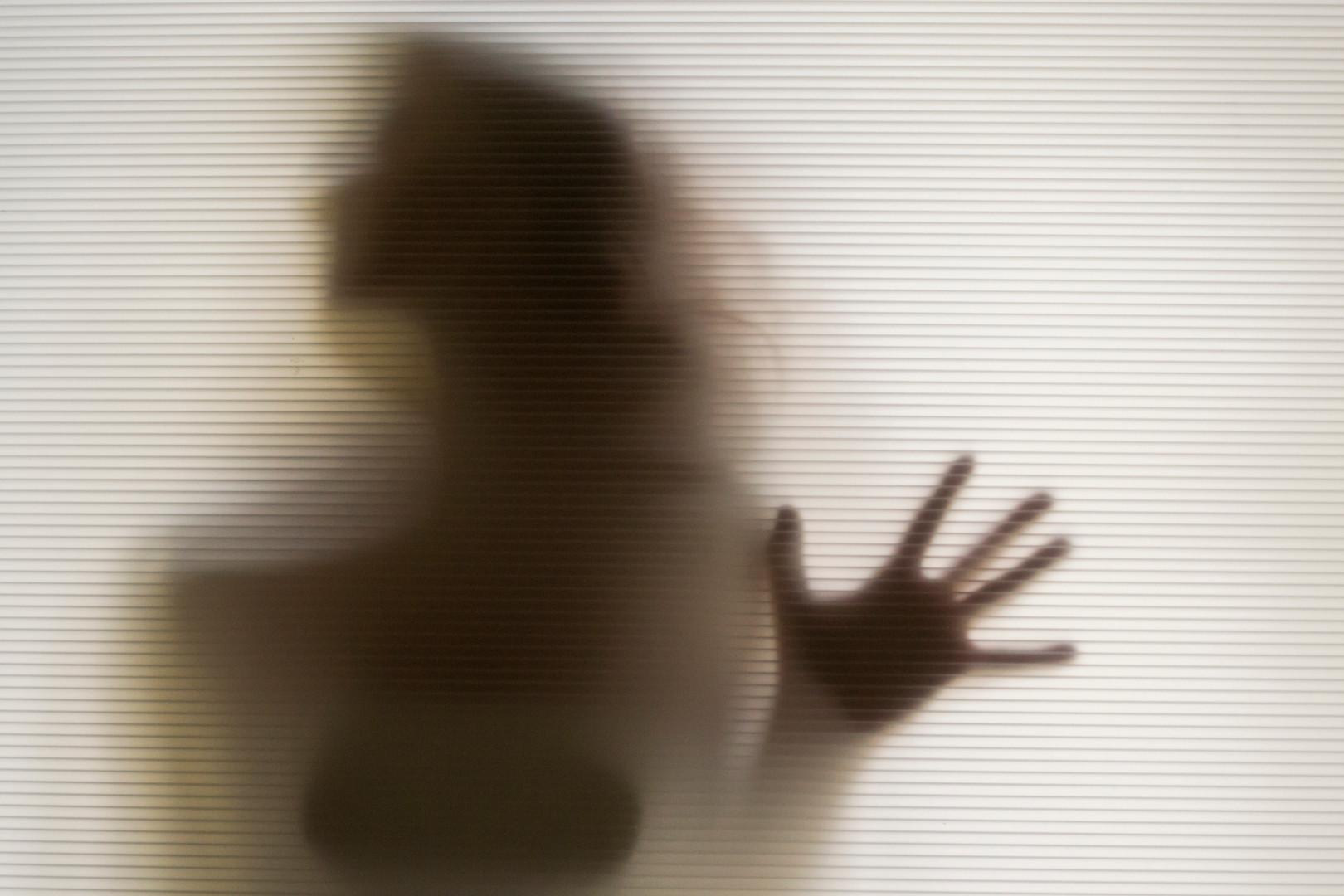 silhouette 2