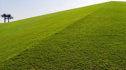petarlackovic Zelena dina