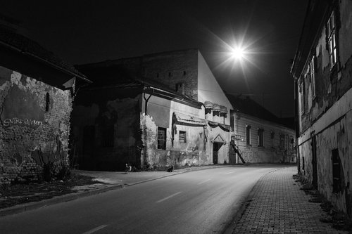 petarlackovic Pseća noć