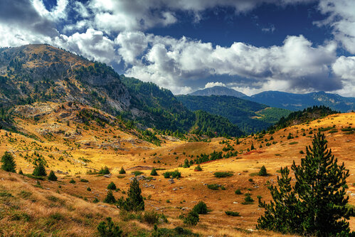 petarlackovic Na planini