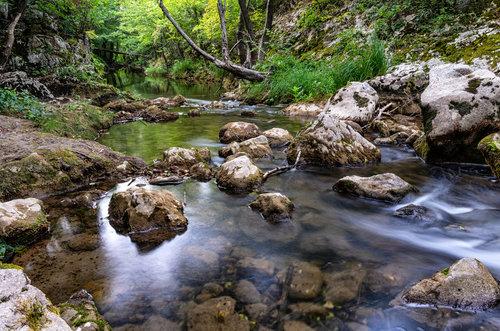 petarlackovic Potok u šumi