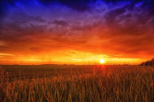 petarlackovic Zalazak na polju