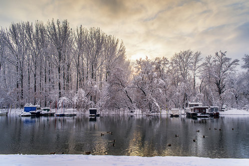 petarlackovic Zimski pejzaž na reci