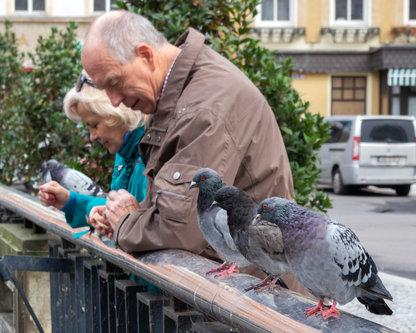 petarlackovic Ljudi i ptice