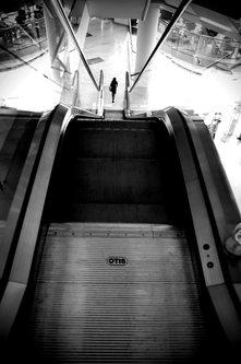 photosenad The way down
