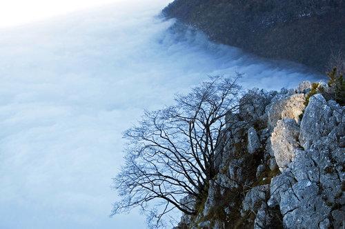 photosenad Planinski detalj