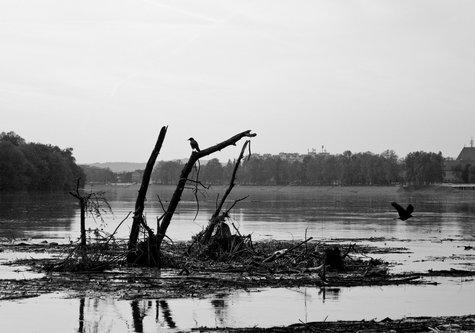 prolaznik Družba riječnih gusara