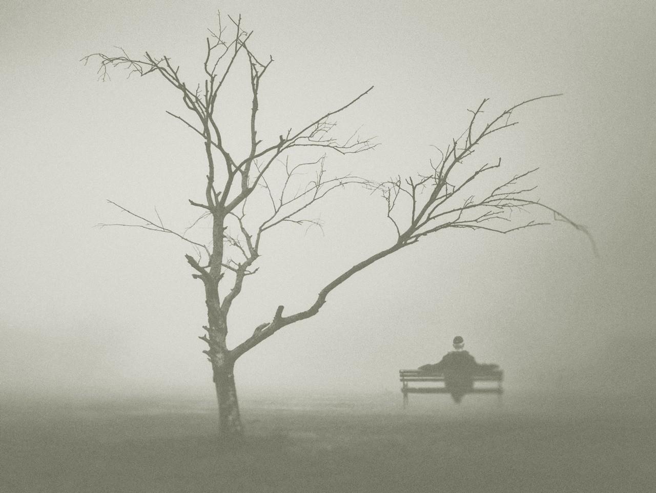 drvo života