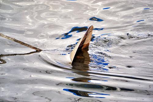 renatak u vodi