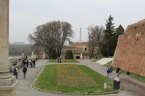 rouz84 Калемегдан