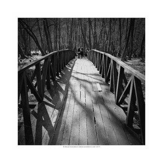 sigerdjan Mostovi razdvajaju ljude...