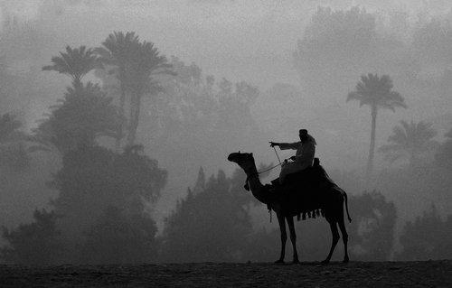 spektar Jutro u oazi