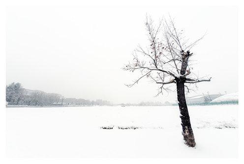 strkov Зима 2019