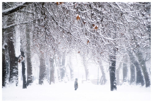 strkov High Snow# 4