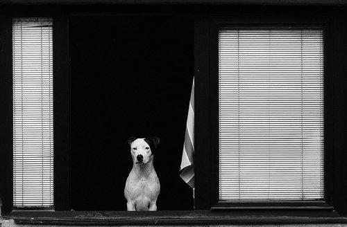 strkov Pas sa stavom