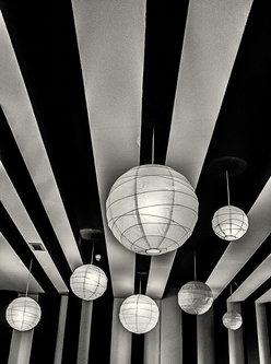 tajib light and lines