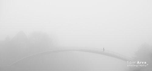 tibor-arva Magla