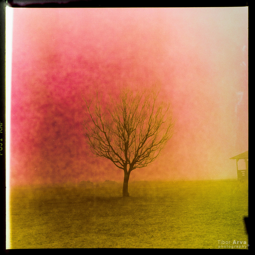 Jutro bez horizonta - analogno II