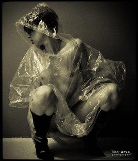 tibor-arva Kiša će...