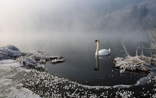 tomaabov Jezero