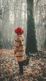 velibor šeširić