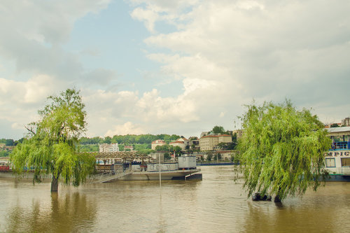 vemapn 20.05 2014 Sava raste 8.fr