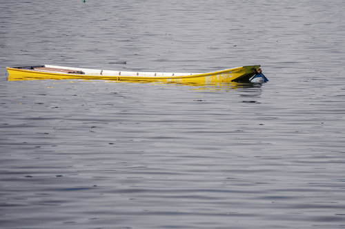 vemapn 22.05 2014 Dunav raste 10.fr