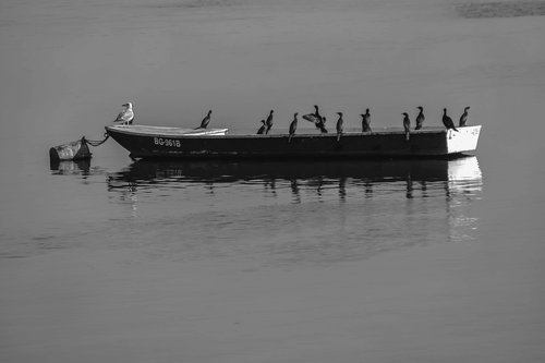 vemapn Dunav 100.fr