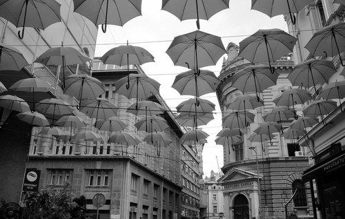 vlada Za kišne dane...