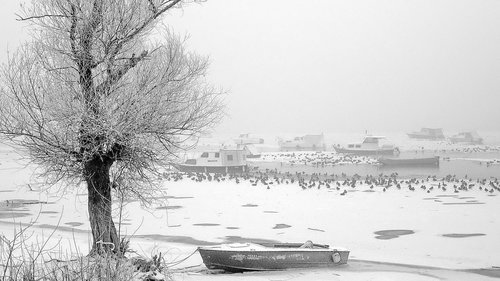 vlada Dunavska zima