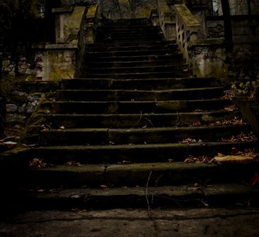 vukasin Stepenice