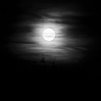 yohmah Noć je tamna i hladna.....