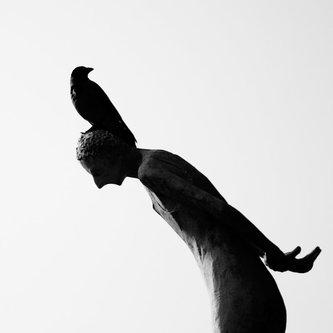 zdepe BirdMan