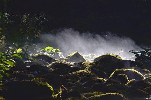 zeljkop Jutarnje maglice