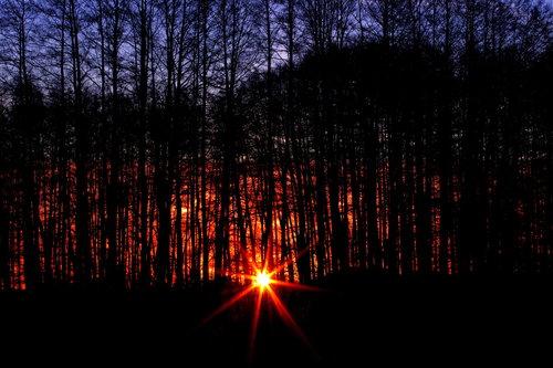 zoleriba sunrise